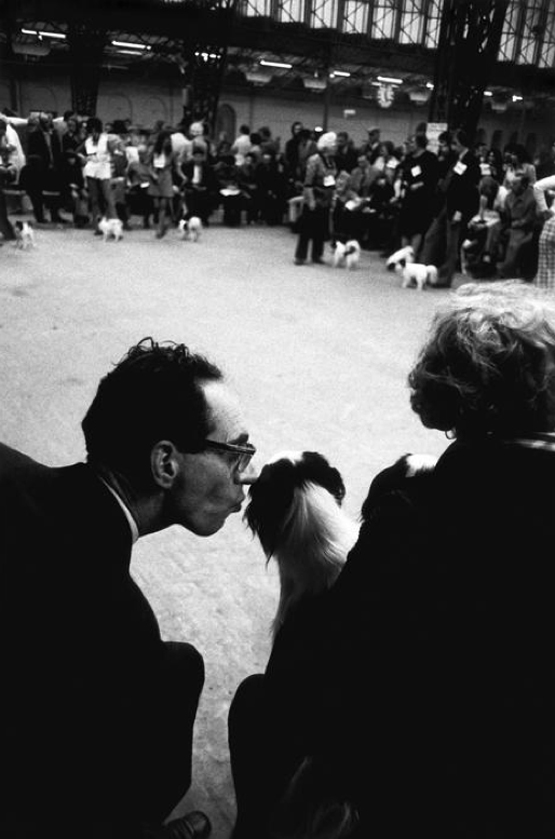 Gran Bretagna. London. Crufts dogshow. 1975