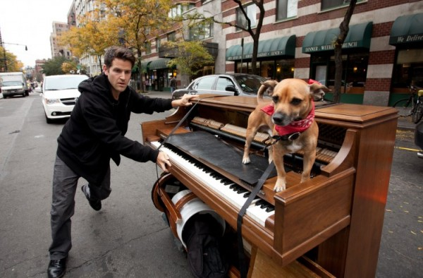 Piano-man-and-dog-travel-600x394