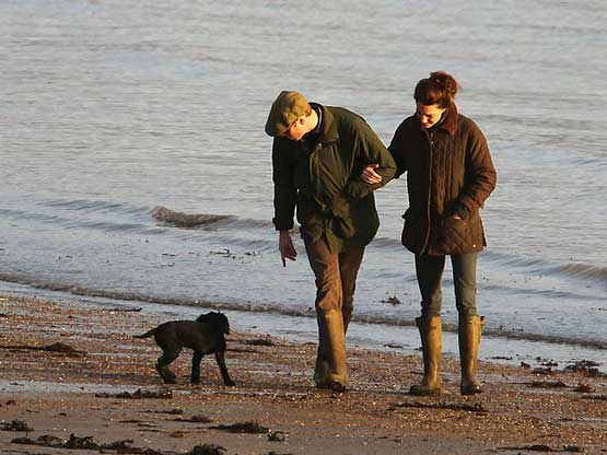 William-and-Kate-with-new-dog-prince-william-and-kate-middleton-28572428-660-495