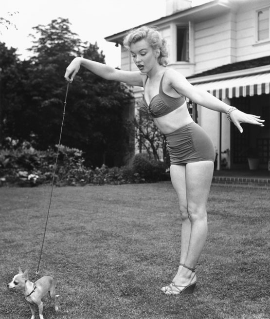 marilyn-monroe-and-dog555