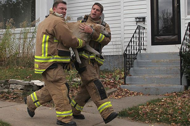 wausau-firefighters-jared-thompson-left-and-jamie-giese-race-down-a-sidewalk-carrying-a-dog-they-had-just-rescued-from-a-house-fire-pic-ap-693226651